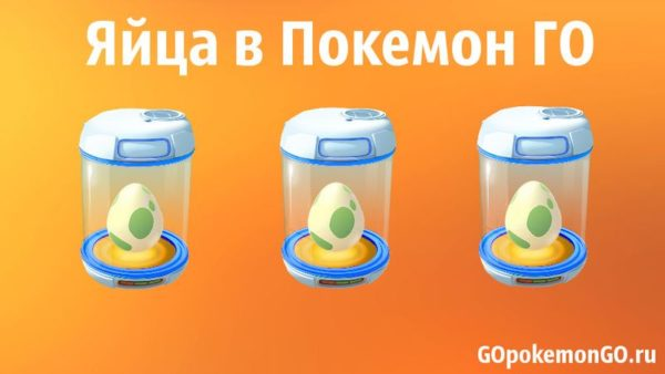 Яйца в Pokemon GO