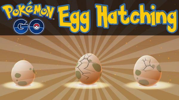 выращивать яйца в Pokemon GO