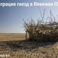 8-ая миграция гнезд в Покемон ГО