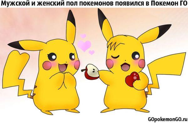 Мужской и женский пол покемонов появился в Покемон ГО