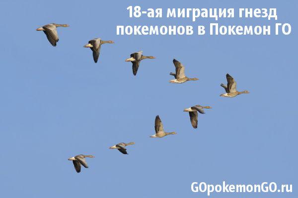 18-ая миграция гнезд покемонов в Покемон ГО