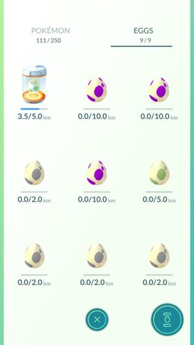 Разный цвет яиц