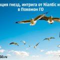 9 миграция гнезд, интрига от Niantic и Togetic в Покемон ГО