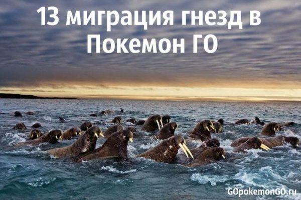13 миграция гнезд в Покемон ГО
